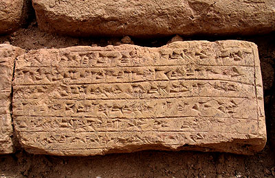 Majidzadeh tells archaeologists to use Proto-Iranian instead of Proto-