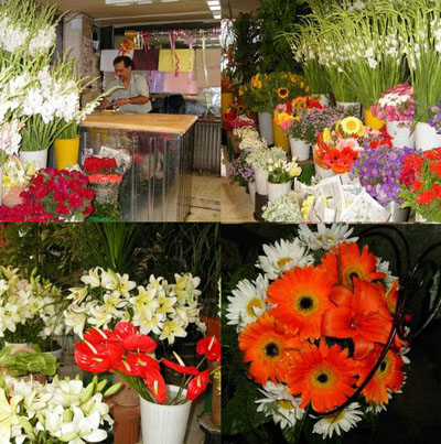Flower shop,flower delivery,flower girl,wedding flower,flowers
